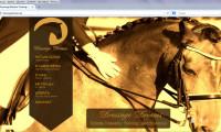 DressageDreams strona internetowa 2014