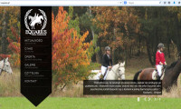 Equarius strona internetowa 2014