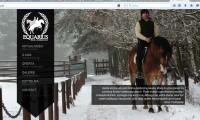 Equarius strona internetowa 2014a