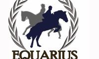Logo Equarius 2013