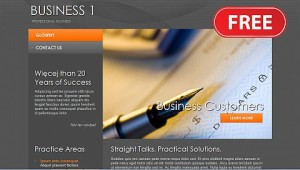 biznes uslugi